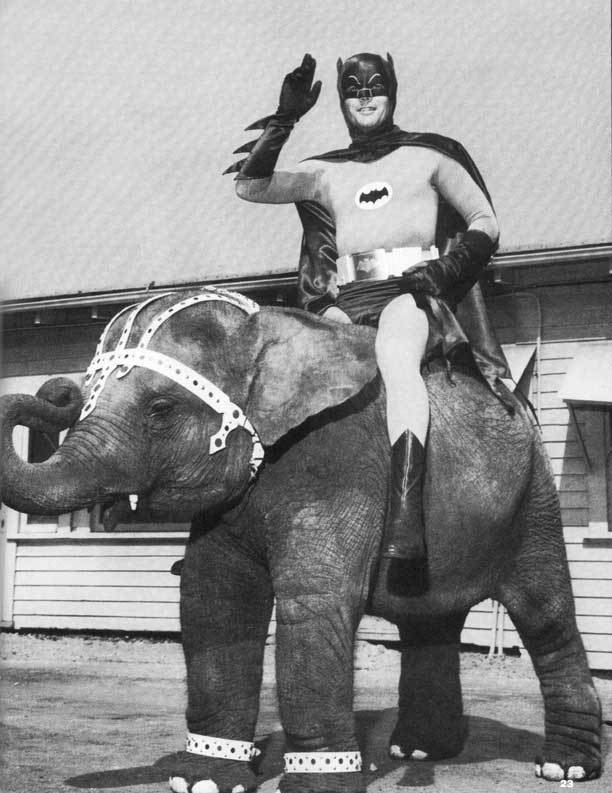 batman-elephant